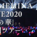 ヒメヒナ 初の全国ライブツアー「藍の華」Zepp5会場で開催